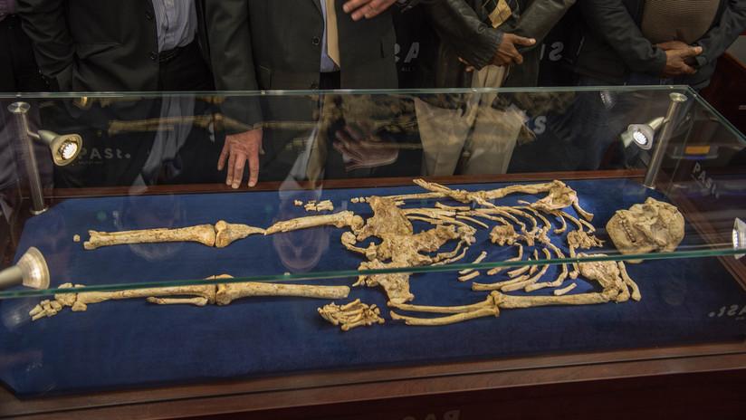 Descubren una especie desconocida de antepasado humano que vivía hace más de 3,6 millones de años