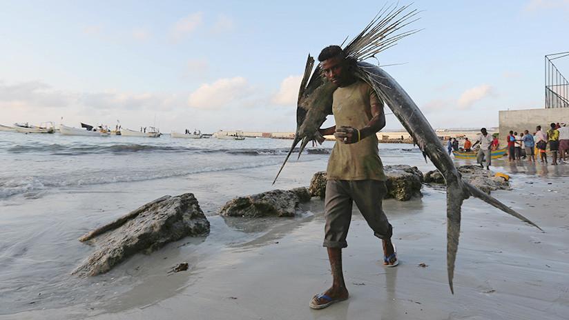 'Batalla' por África: Somalia da derechos de pesca a China