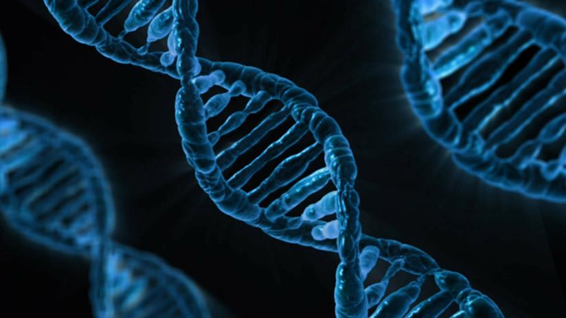 Científicos rusos hallan nuevos genes asociados con el alcoholismo