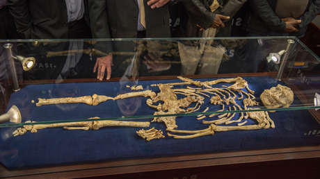 Esqueleto de la homínida 'Little Foot'