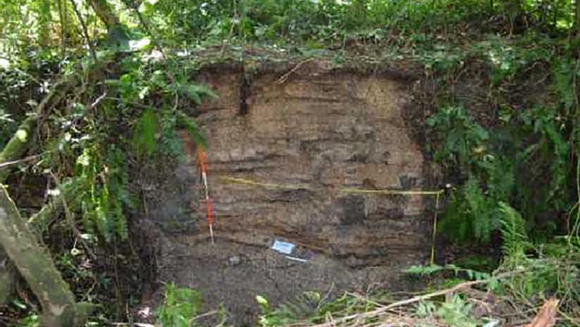 Una mujer con antebrazos masivos: hallan el entierro humano más antiguo del mundo (FOTO)