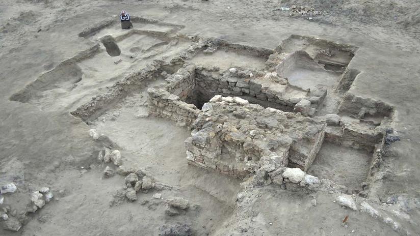 FOTOS: Hallan el primer sitio urbano helenístico en Egipto con un trozo de cráneo de elefante