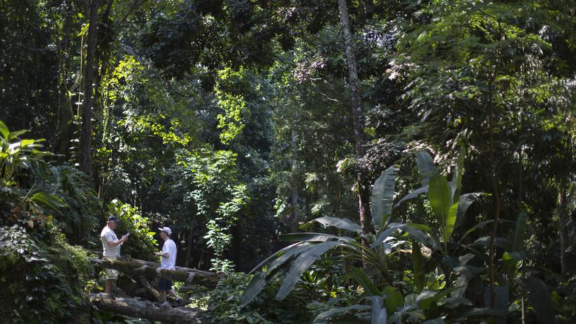 Tres hombres armados con cuchillos y un revolver roban a 40 turistas en Río de Janeiro