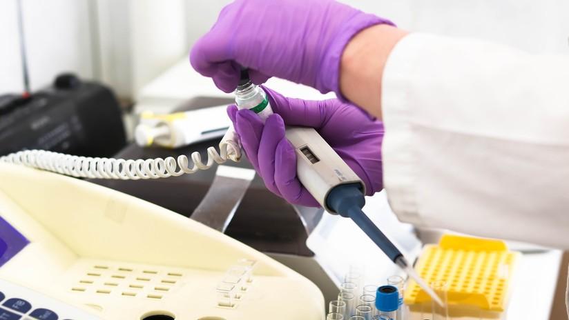 Científicos españoles confirman el éxito de un tratamiento contra el cáncer