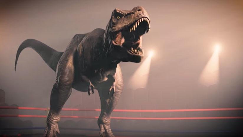 VIDEO: Pequeña ave de las Galápagos tiene una mordida 320 veces más fuerte que el T. Rex