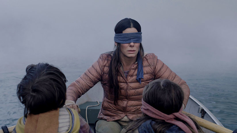 """Un resultado predecible"": Intenta el reto de 'Bird Box', se venda los ojos y choca su auto (FOTOS)"
