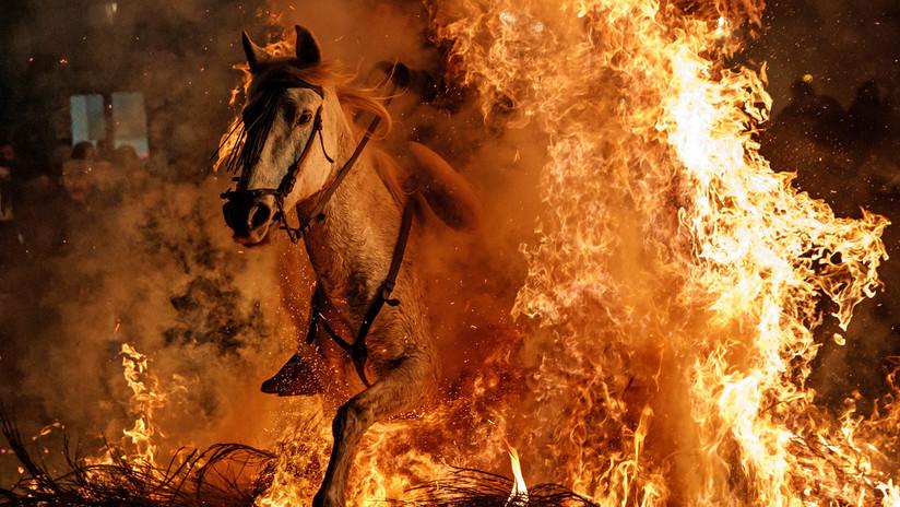 Caballos y fuego, los protagonistas de la antigua tradición española de las Luminarias