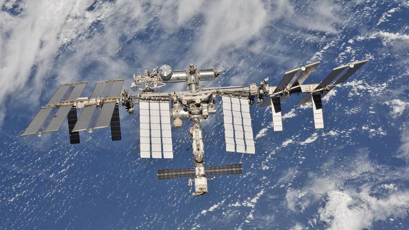 Planean trasplantar tejidos vivos impresos en la Estación Espacial Internacional a ratones