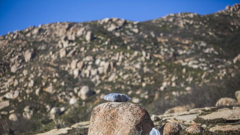 Cuatro mujeres, culpables de varios delitos en EE.UU. por dejar agua para migrantes en el desierto