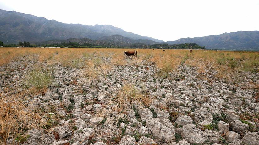 De paraíso surfista a desierto: La laguna de Aculeo en Chile se seca por primera vez en 2.000 años
