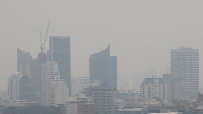 Tos y estornudos con sangre: La polución causa severos problemas a los habitantes y mascotas de Bangkok (FOTOS)