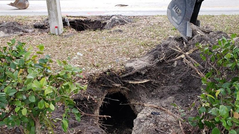 """FOTOS: Hallan túnel como """"en las películas"""", cavado por ladrones para robar un banco en Florida"""