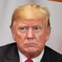 Donald Trump, presidente de EE.UU.