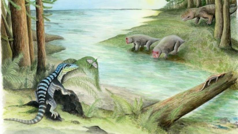 ¿Bosques y ríos en la Antártida?: Hallan un fósil que reescribe la historia del continente helado