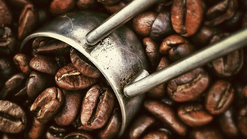 ¿Receta del café ideal? Científicos descubren cómo mejorar su sabor y olor