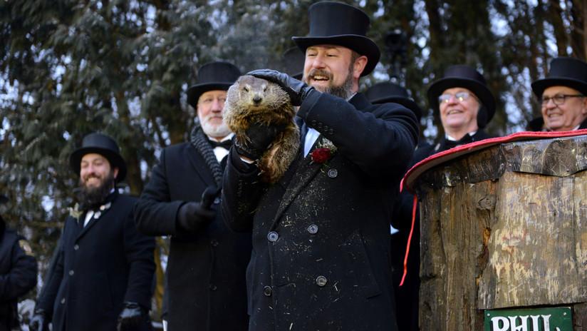 VIDEO: La marmota Phil 'predice' temprana llegada de la primavera a EE.UU.
