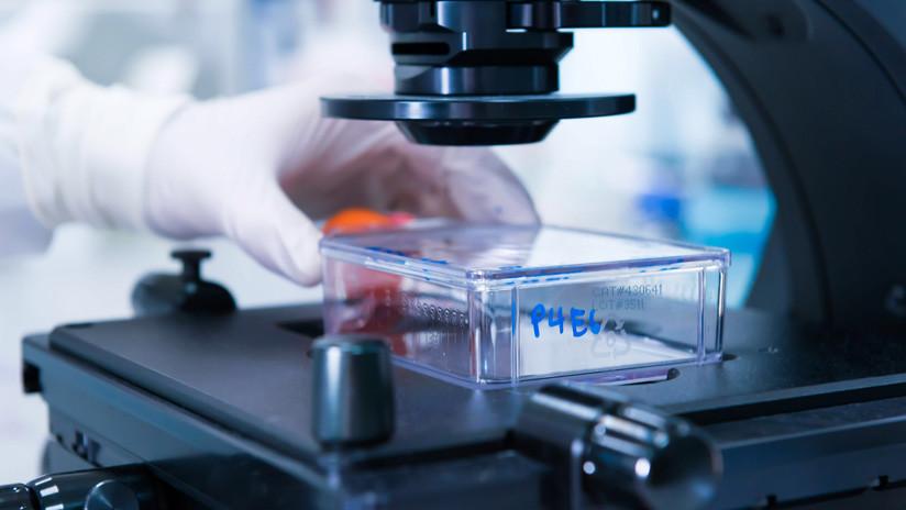 El tratamiento israelí que busca acabar con el cáncer el próximo año