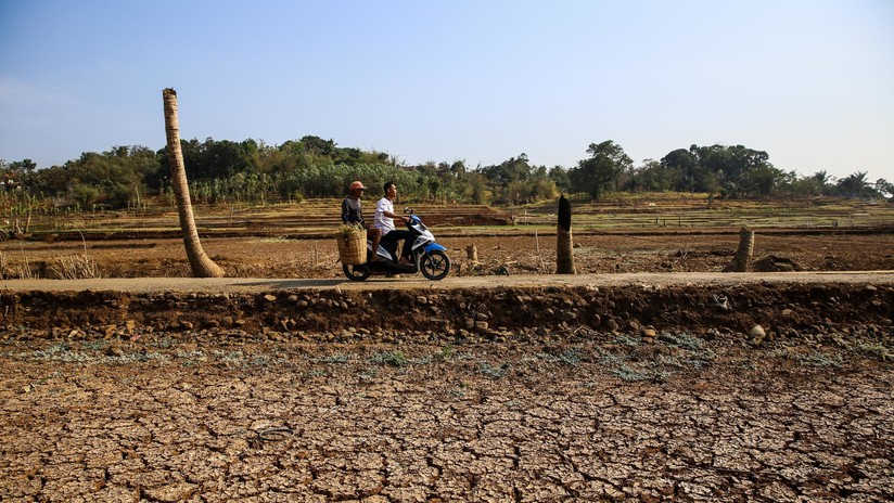 """El cambio climático puede provocar un """"colapso incontrolable"""" comparable a la crisis financiera"""