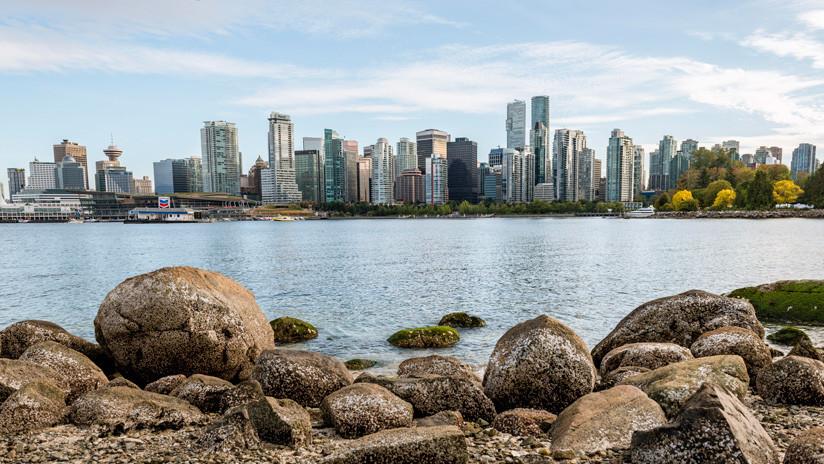 El 15º caso desde 2007: Encuentran un pie humano en las costas de Canadá y piden ayuda para identificar al dueño