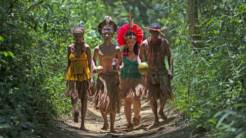 Por qué Brasil es el país del mundo con mayor número de asesinatos por conflictos rurales