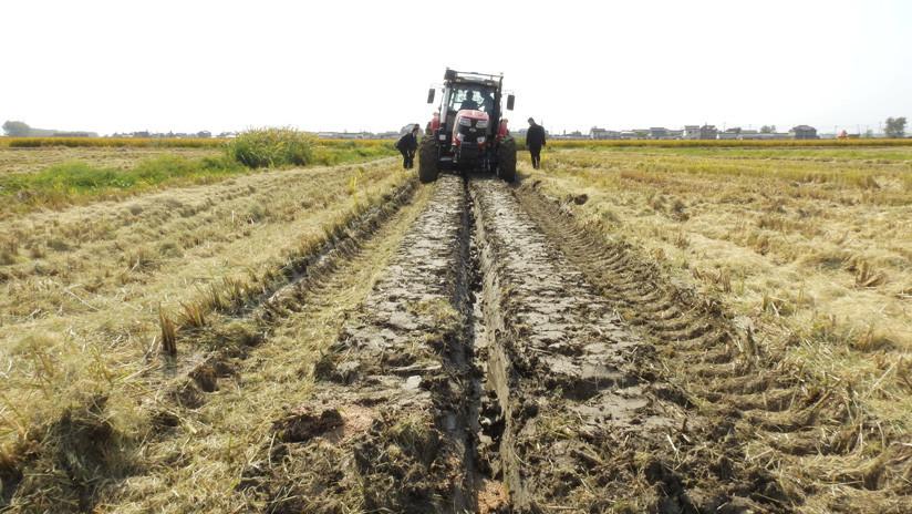 China creará áreas cultivables resistentes a sequías e inundaciones que superarán el tamaño de España