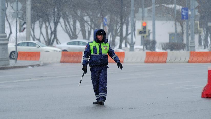 VIDEO: La policía detiene el tráfico para que un perro cruce la carretera en Siberia
