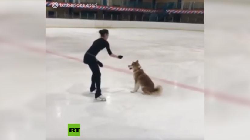 VIDEO: La patinadora rusa Alina Zaguítova entrena junto a su perra de raza Akita Inu