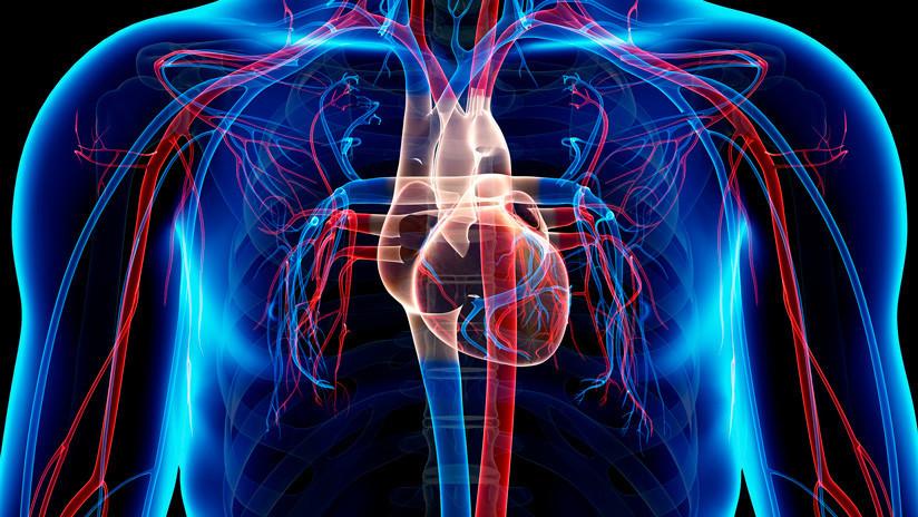 Los médicos explican por qué el cáncer de corazón es tan raro