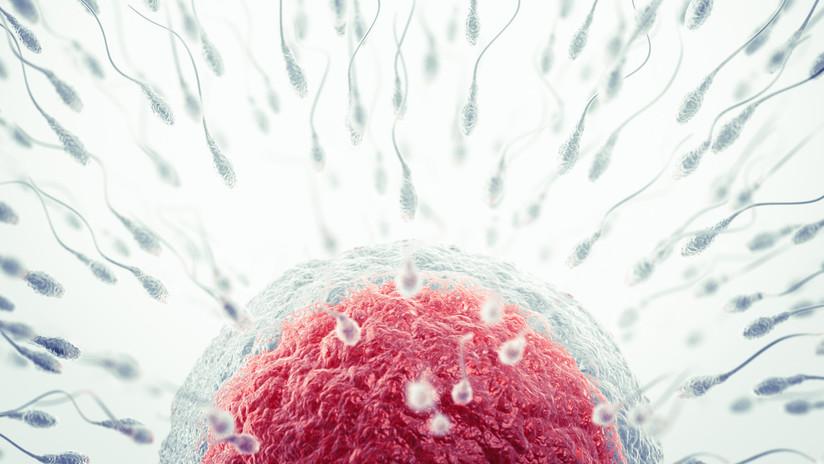 Dos espermatozoides fecundan un óvulo a la vez y nacen gemelos semiidénticos