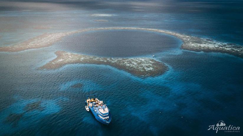 FOTOS: Muestran lo que ocultan las aguas profundas y el fondo del Gran Agujero Azul