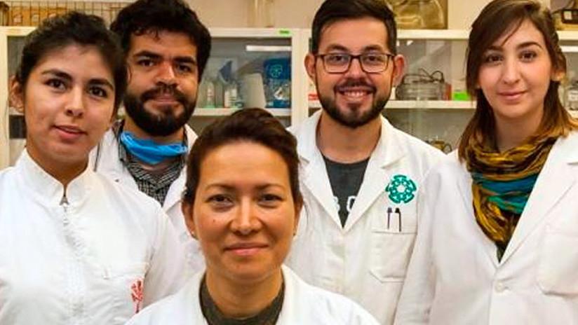 La doctora Eva Ramón Gallegos (al centro) con parte de su equipo de trabajo.
