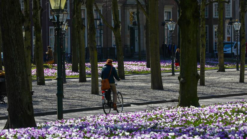 """La bicicleta eléctrica será """"la nueva normalidad"""" en el país de los pedales"""