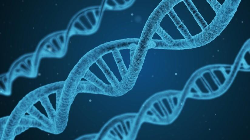 Desarrollan una prueba de ADN para distinguir a gemelos idénticos que ayudaría en investigaciones criminales