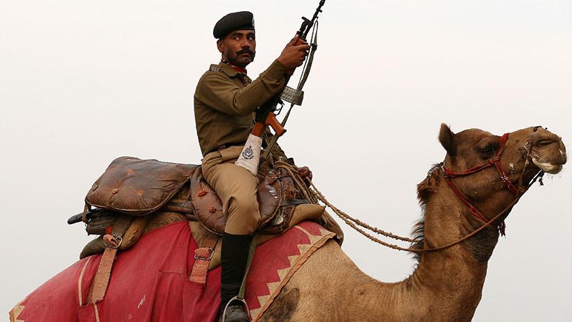 Un camello 'deprimido' se niega a comer y beber tras la muerte del policía indio que lo montaba