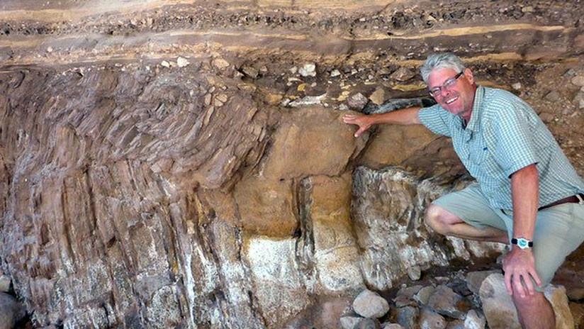 Hallan una antigua 'supercarretera' donde vivían gusanos en el fondo del océano hace 500 millones de años