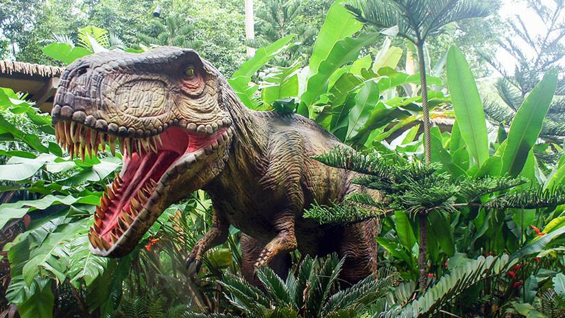 Aseguran que los dinosaurios no estaban en declive antes del impacto del asteroide