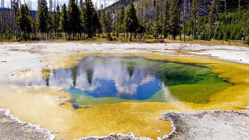 'Cazan' en Yellowstone una bacteria que 'se come' la contaminación y produce electricidad
