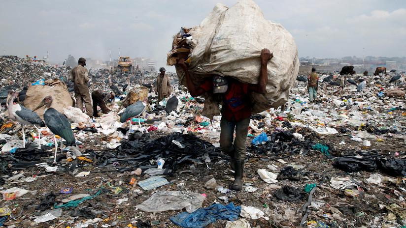 """Las políticas para proteger el medioambiente """"progresan en sentido equivocado"""", advierten expertos de la ONU"""