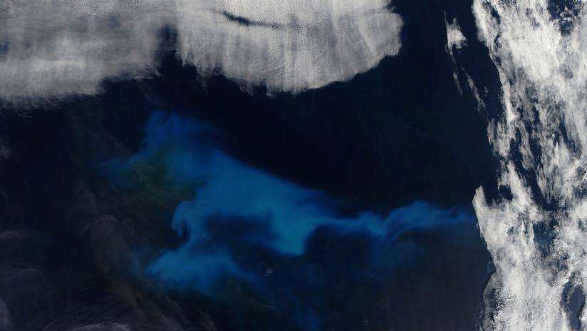 Florecimiento de fitoplancton en el Atlántico Norte, el 23 de julio de 2013