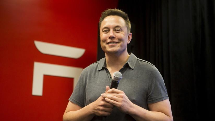 'RIP Harambe': Elon Musk publica una canción en honor al gorila muerto