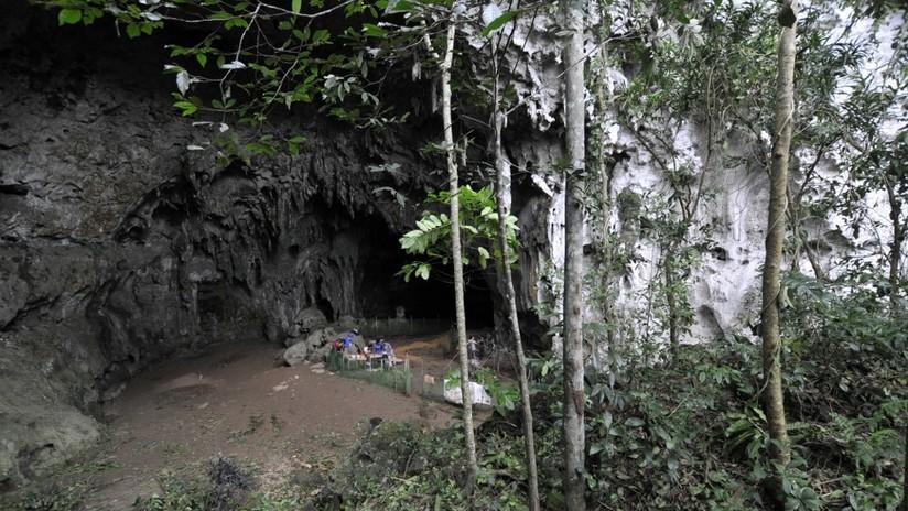 Homo luzonensis, nueva especie de humanos