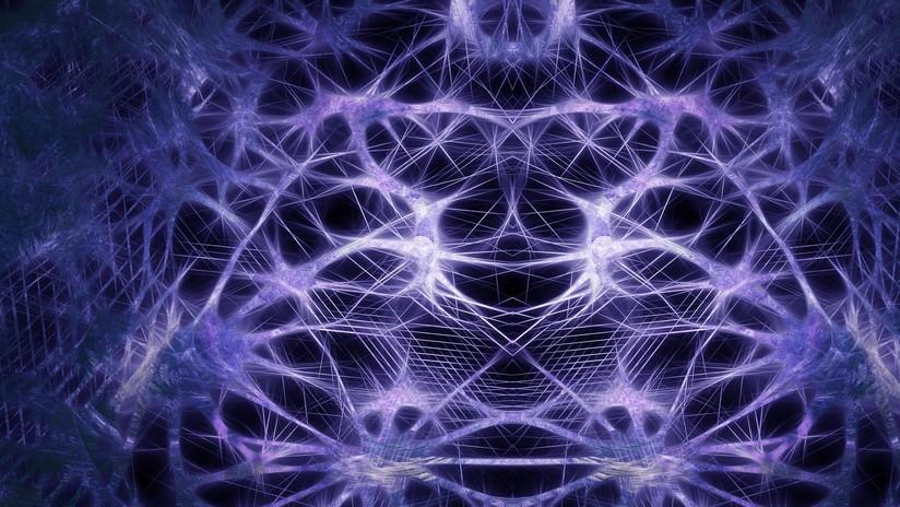 Científicos reviven por primera vez el cerebro de un animal muerto