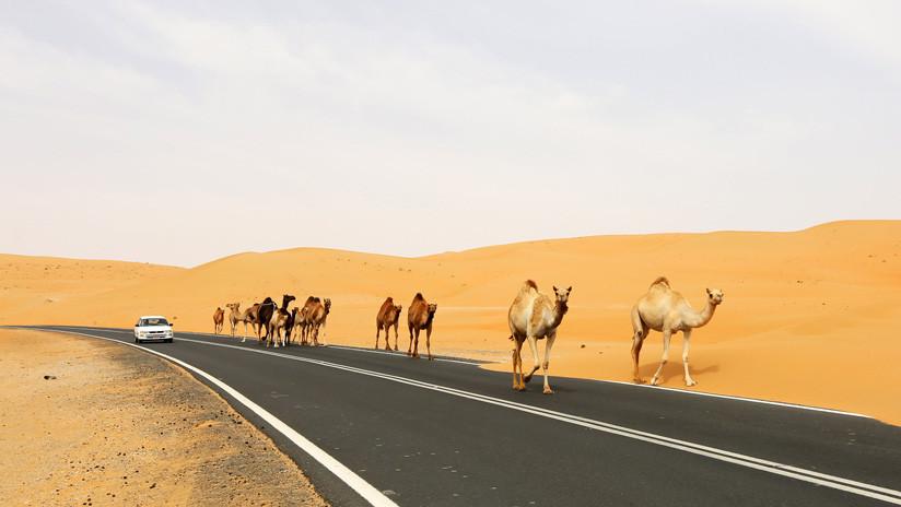 Todos los caminos llevan a Pekín: 17 países árabes se unen a las Nuevas Rutas de la Seda de China
