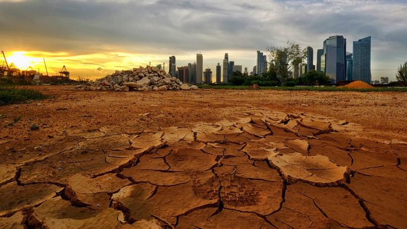 Científicos proponen un plan de 100.000 millones de dólares anuales para salvar la biodiversidad de la Tierra
