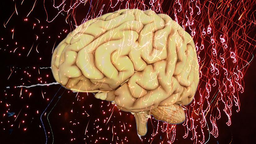 Científicos comprueban en ratas que la principal causa del alzhéimer no es la que se creía hasta ahora