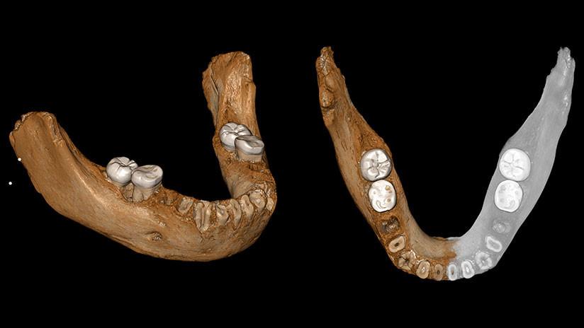 Hito arqueológico: Identifican un antepasado humano de hace 160.000 años hallado en el Tíbet