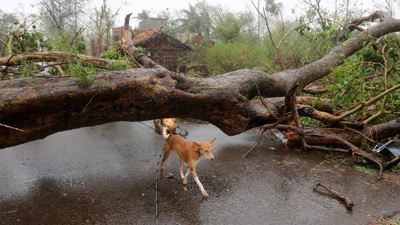 Grúa en caída libre y edificios derruidos: Graban el paso del devastador ciclón Fani por la India (VIDEOS)