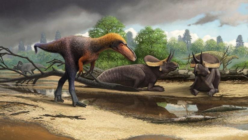 """FOTOS: Científicos descubren que tenían restos del antes desconocido """"primo"""" del Tyrannosaurus rex durante 21 años sin saberlo"""