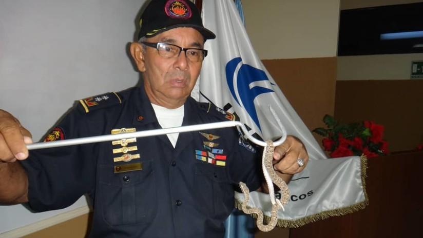 El 'héroe anónimo' que salva gratuitamente a víctimas de mordeduras de serpientes en Venezuela