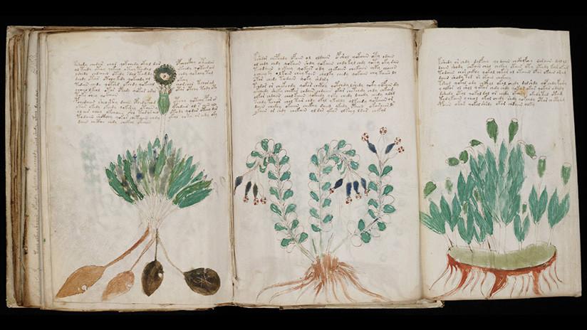 Un acadèmic afirma haver desxifrat el codi del misteriós manuscrit Voynich
